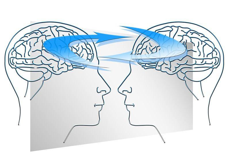 La teor a del paisaje resaltado en el trastorno del espectro del autismo autismo diario - Neuroni specchio e autismo ...